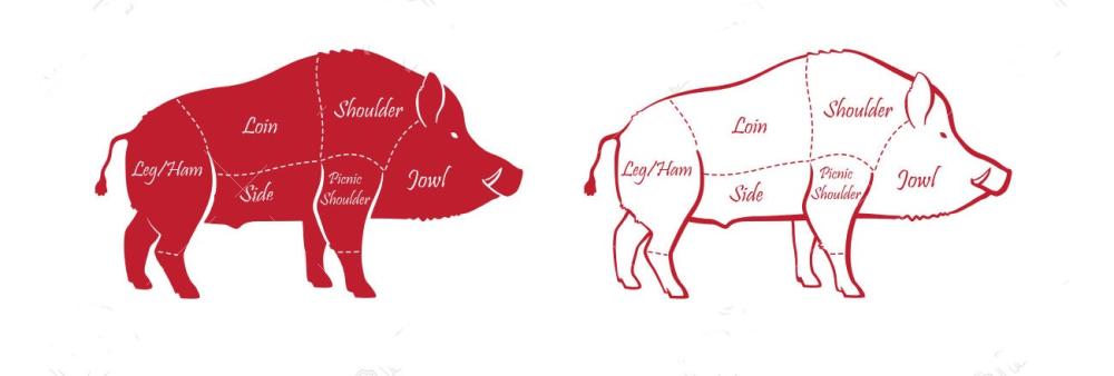carne de javali