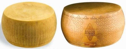 differenze-parmigiano-reggiano-grana-padano-690x336